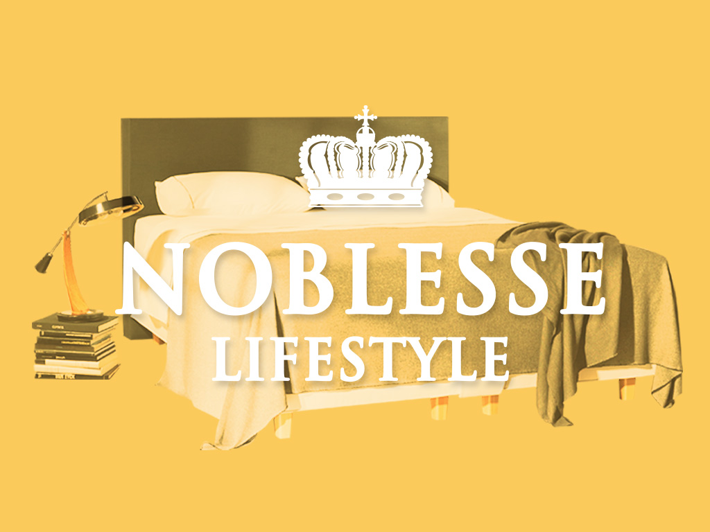 Noblesse Product Launch and Website Development